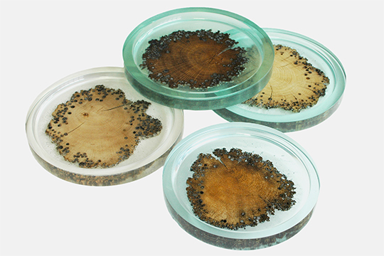 burano-plate-(5)