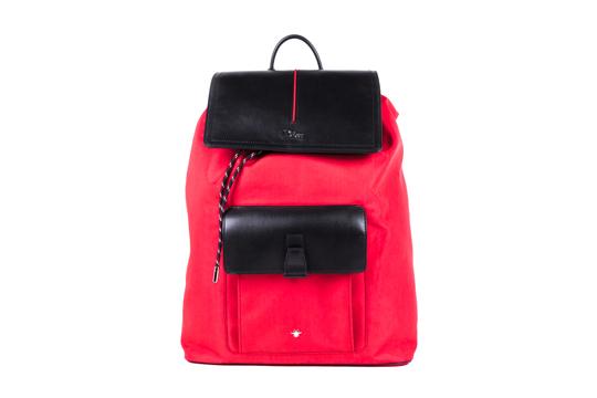 a.2-Dior-Homme-Bag